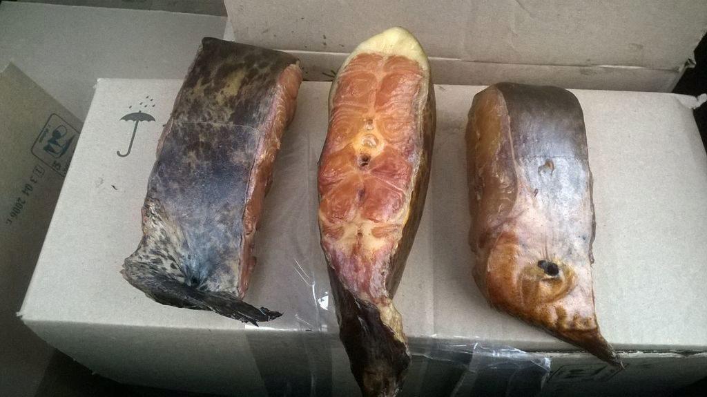 астрахань рыбалка на сама